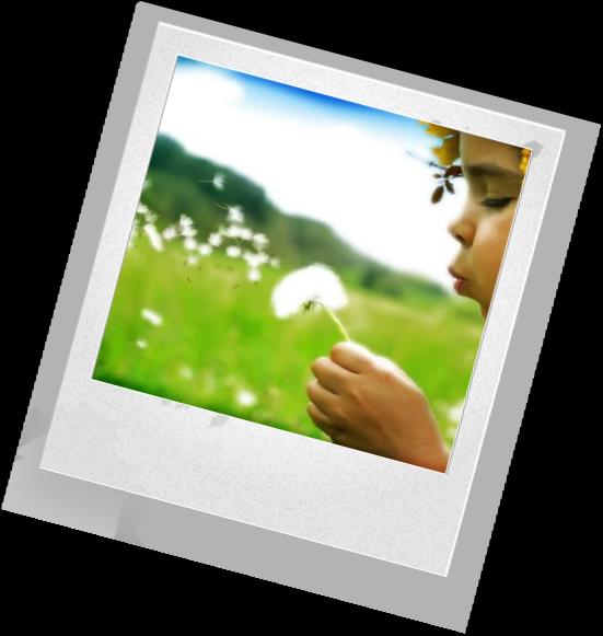 Экологическое воспитание в детском саду презентация которого будет лучшей