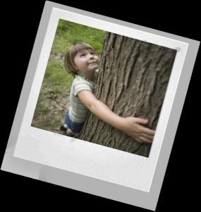 план экологического воспитания
